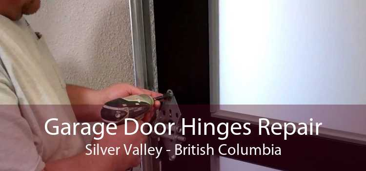 Garage Door Hinges Repair Silver Valley - British Columbia