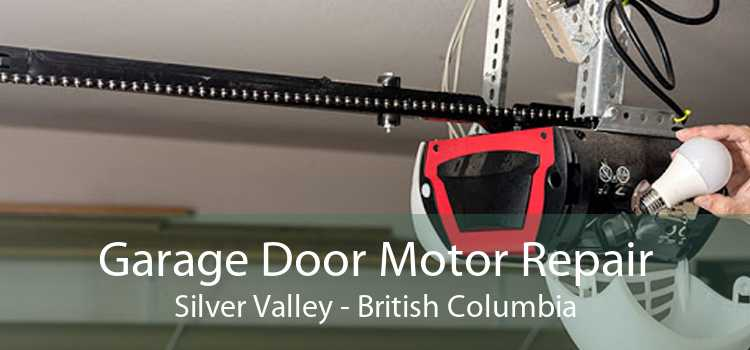 Garage Door Motor Repair Silver Valley - British Columbia