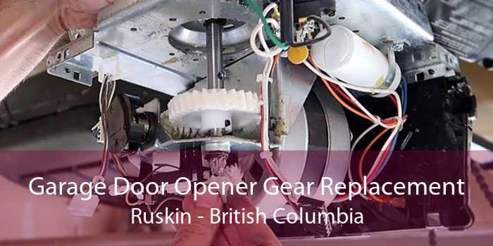 Garage Door Opener Gear Replacement Ruskin - British Columbia
