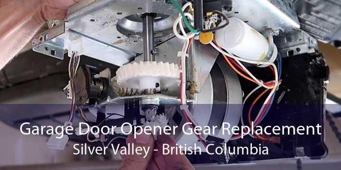 Garage Door Opener Gear Replacement Silver Valley - British Columbia
