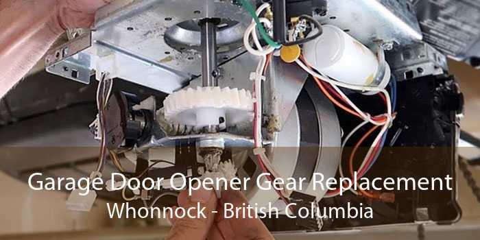 Garage Door Opener Gear Replacement Whonnock - British Columbia