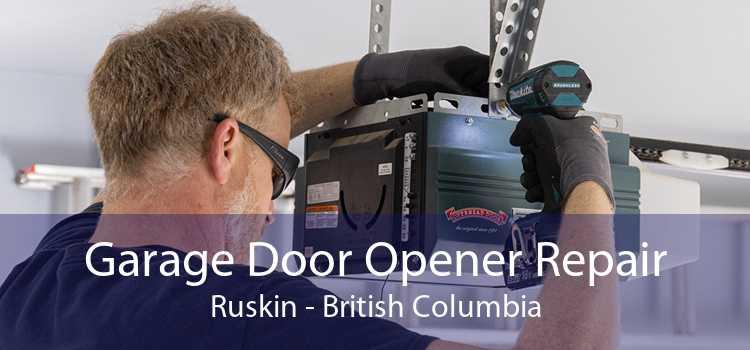 Garage Door Opener Repair Ruskin - British Columbia