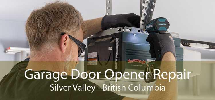 Garage Door Opener Repair Silver Valley - British Columbia