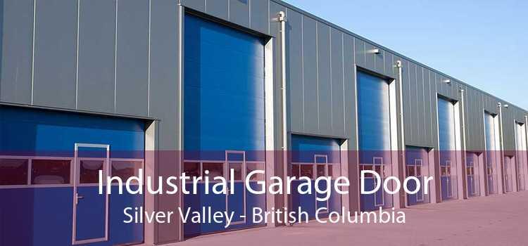 Industrial Garage Door Silver Valley - British Columbia