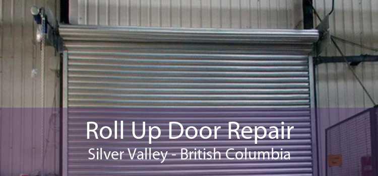 Roll Up Door Repair Silver Valley - British Columbia